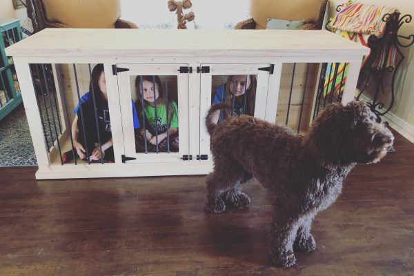 dog-kennel-6